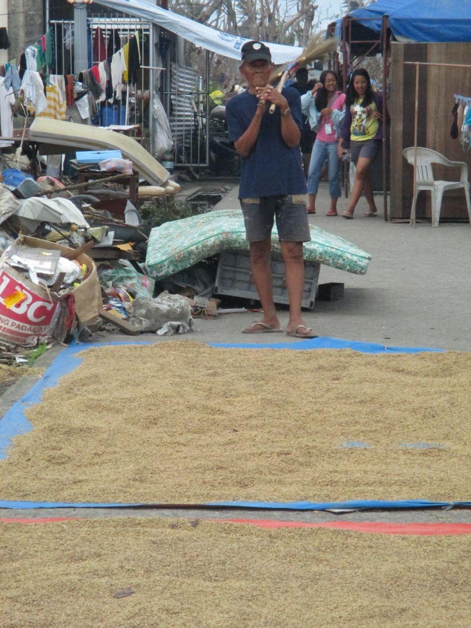 Reis wird auf der Straße getrocknet