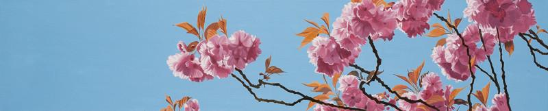 Baumblüte | 2011 | 100 x 80 cm | Acryl auf Baumwolle