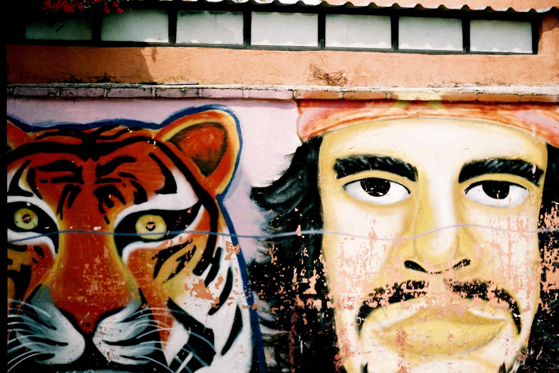 Street Art in Mexiko ©Ricarda Simon