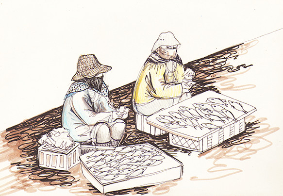 """Essaouira Fish Market"" (Morocco), coloured pencils, markers & fineliner, 2015"