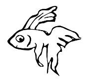 Trockenkauartikel vom Fisch