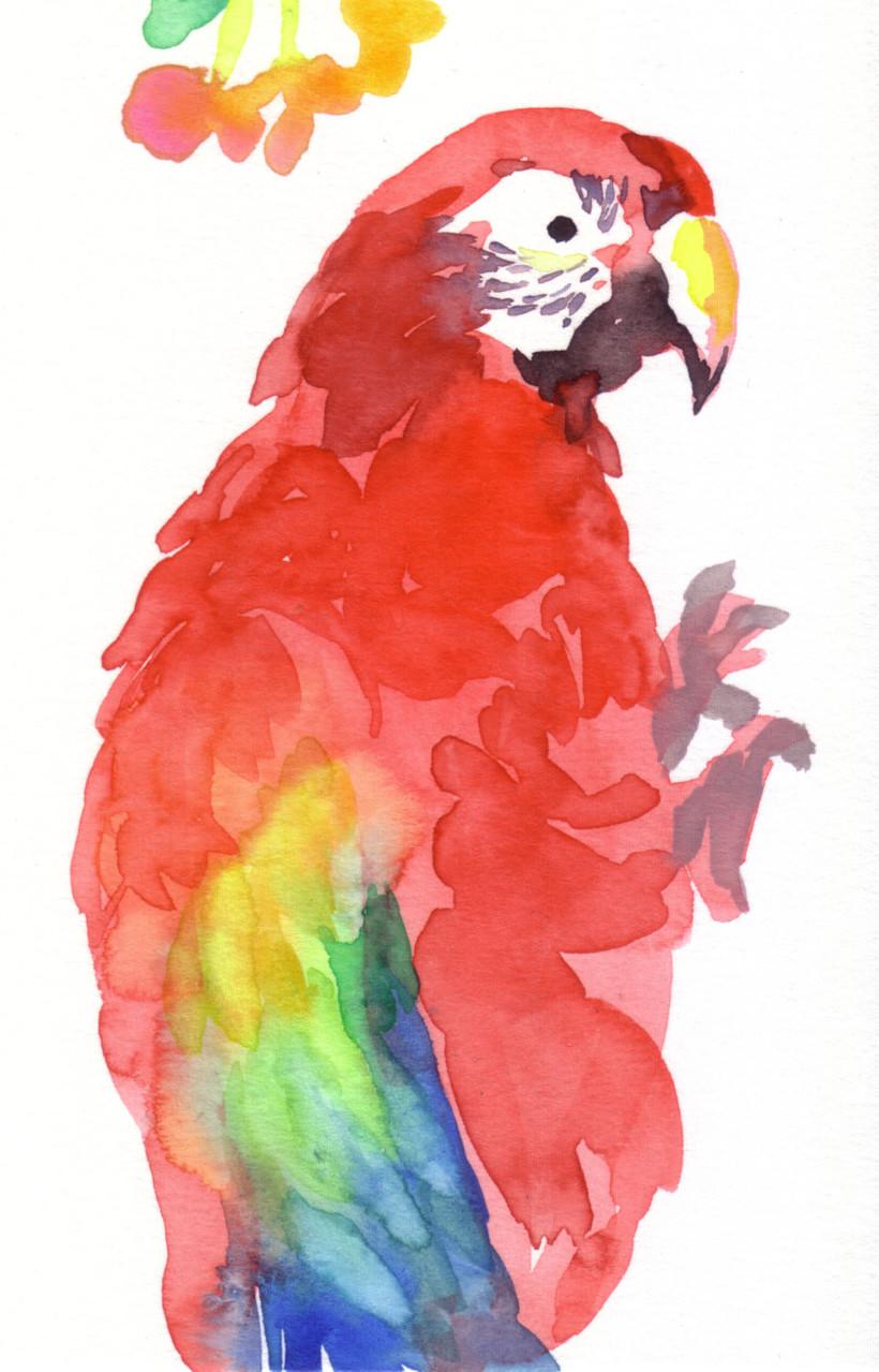 """""""コンゴウインコ""""  watercolor,paper 10×14.8cm"""