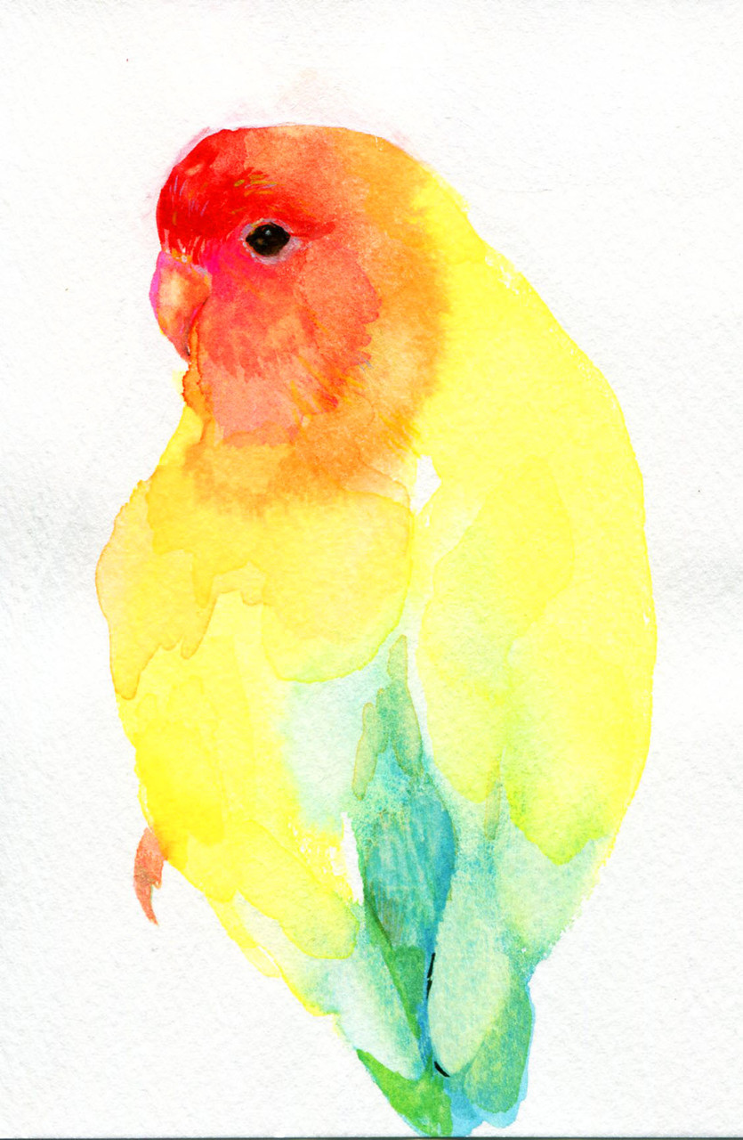 """""""コザクラインンコ""""  watercolor,paper 10×14.8cm 2015"""