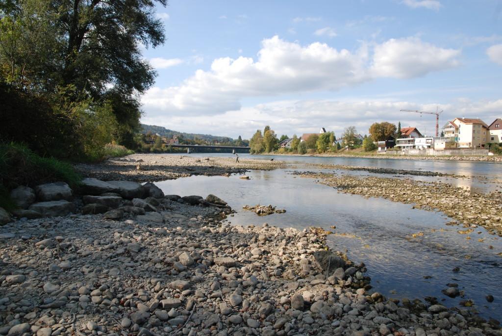 Der Rhein bei der Badi Zurzach