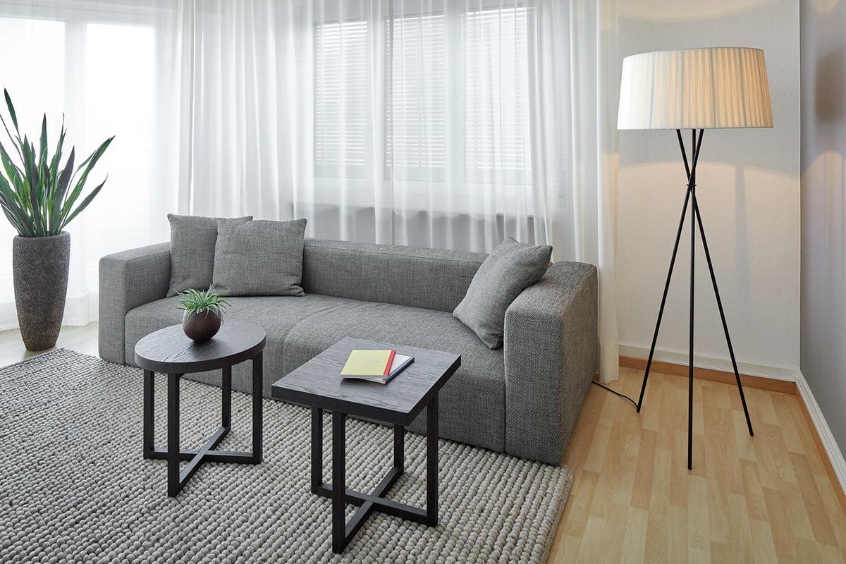 Apartment Küsnacht Living