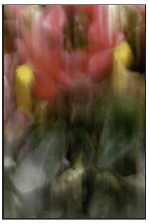 Tirage pigmentaire - 7 Epreuves (dont 3 en diasec Brillant 300x450 mm)