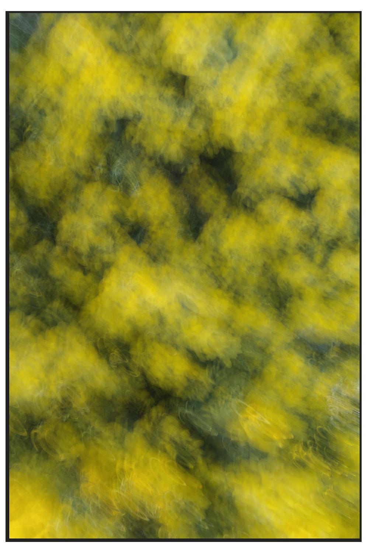 Tirage pigmentaire - Epreuve unique en trois formats différents