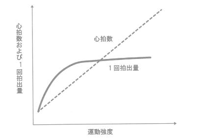 運動強度と心拍数と1回拍出量の関係