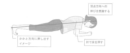 体幹強化エクササイズ