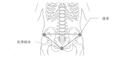 骨盤のニュートラル・ポジション