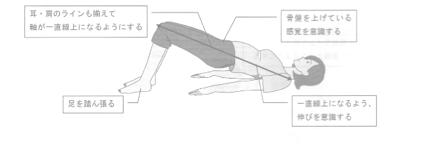 背中の動きを感じるエクササイズ