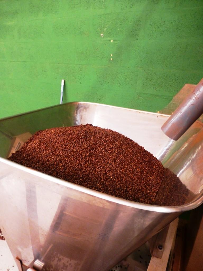 Les grains ont une douce odeur de terre et de caramel