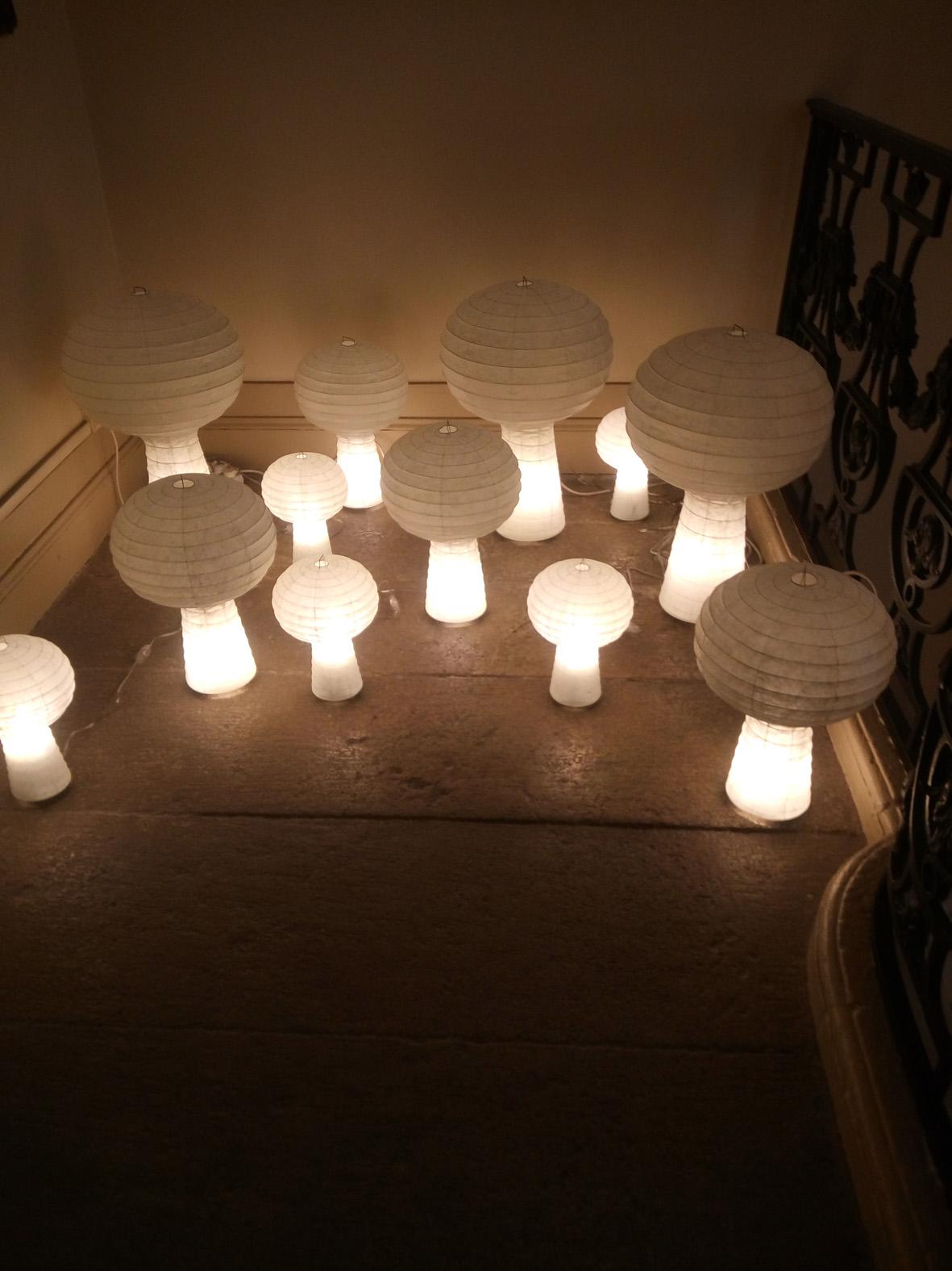 Lanternes e J. Morisson créées en 2005