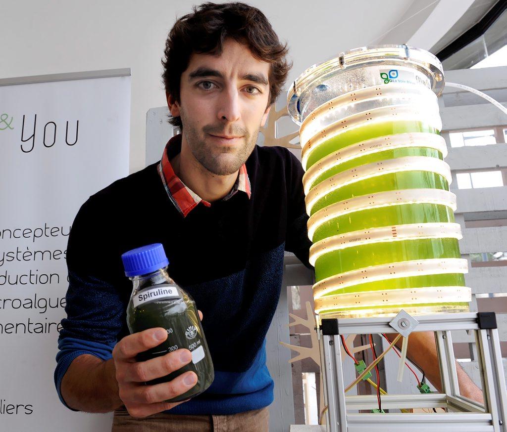 Une phytotière pour produire sa spiruline at home
