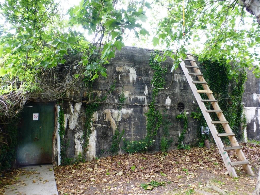 Le bunker où Laurent fait son vin
