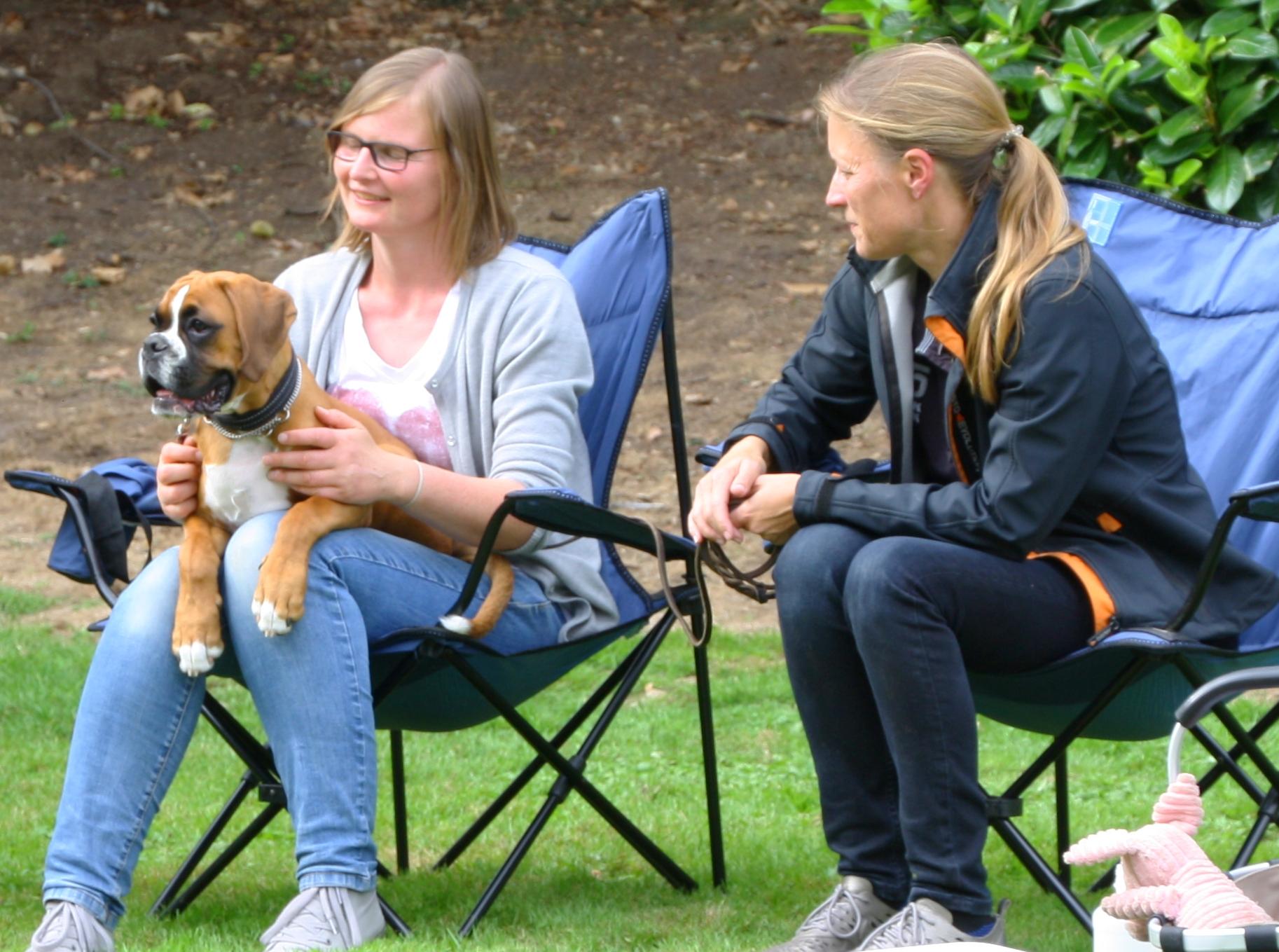 09.09.18   BK Krefeld  - ein Schoßhund -