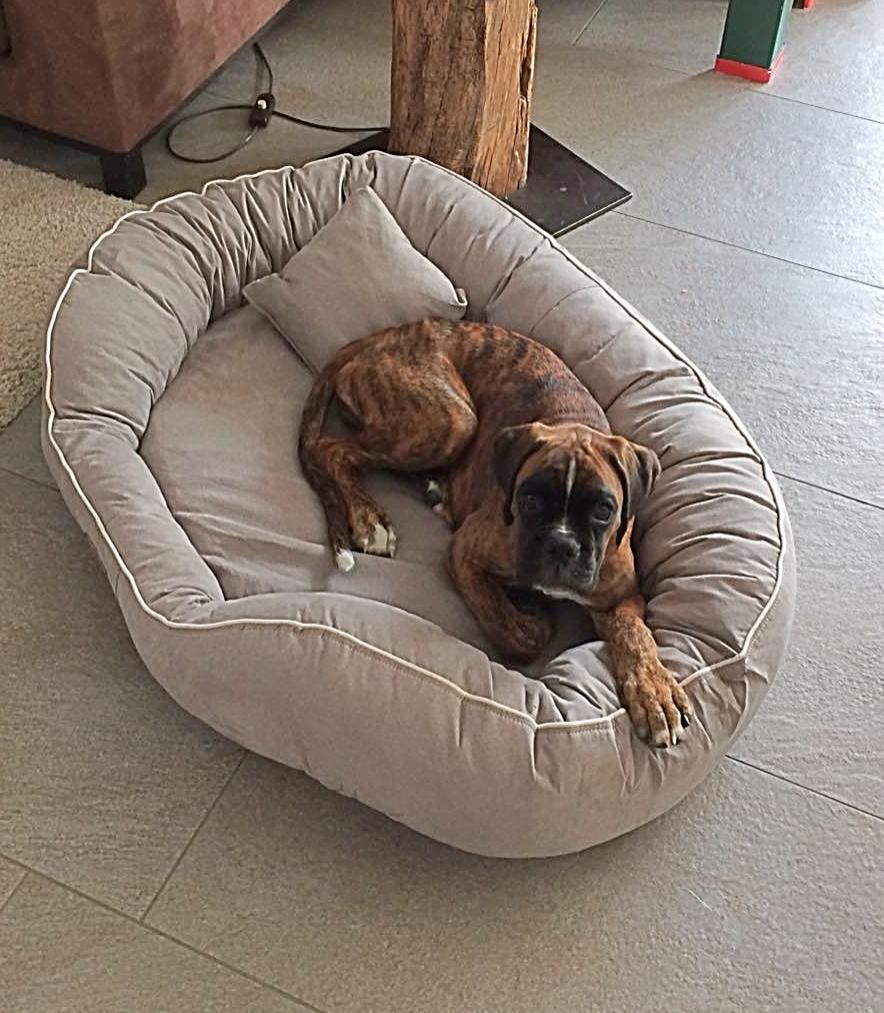 mein neues Bettchen
