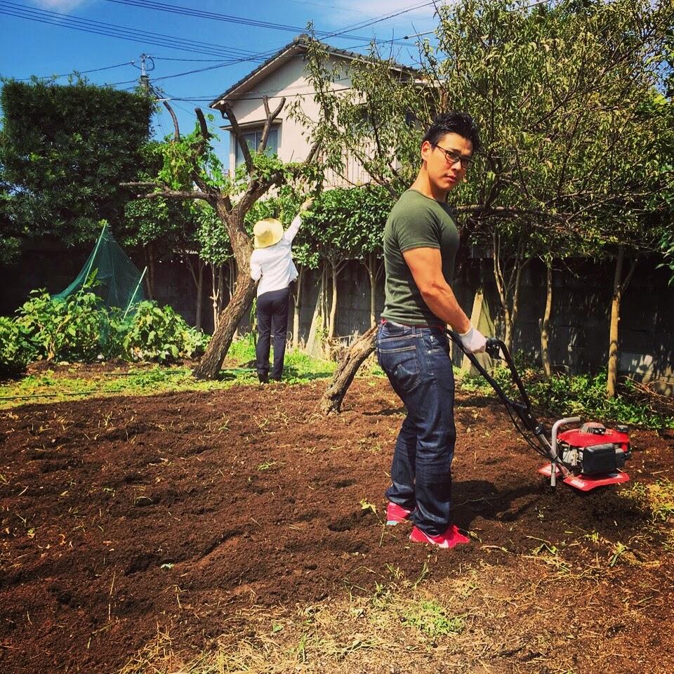 秋冬野菜の為に土作り。