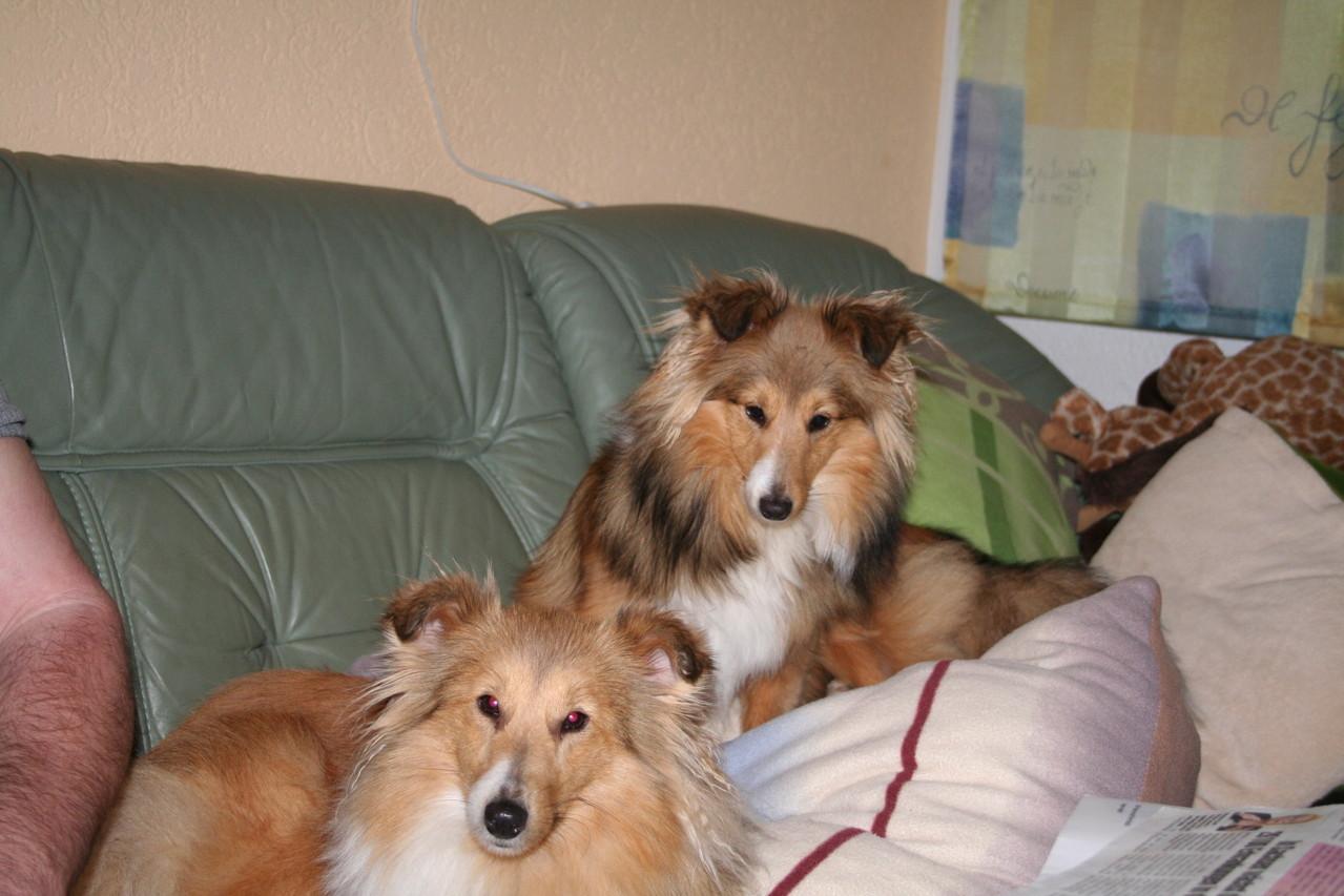 Hermine wird eine süße, junge Dame. Coco & Pia sind ihre besten Freundinen.