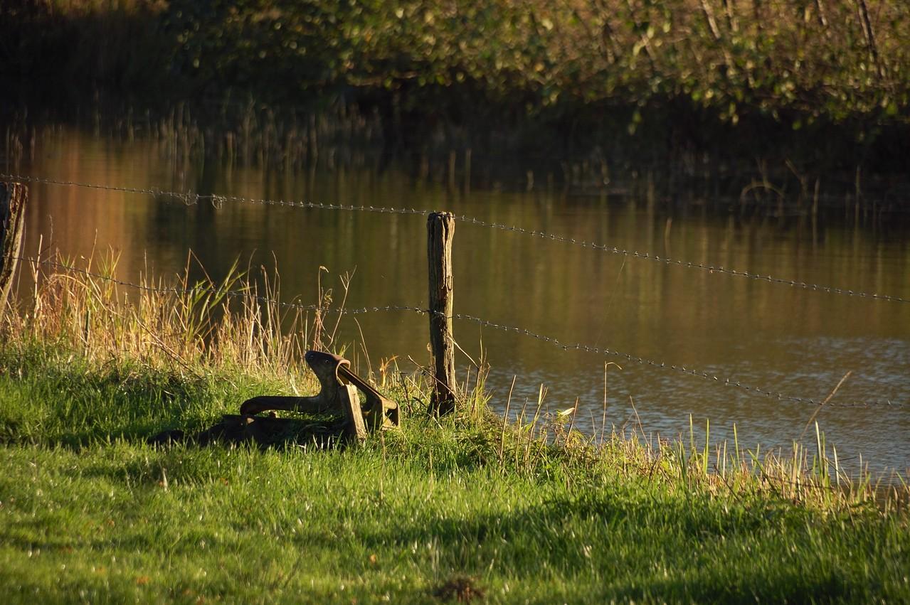 Viehtränke auf verlassener Weide