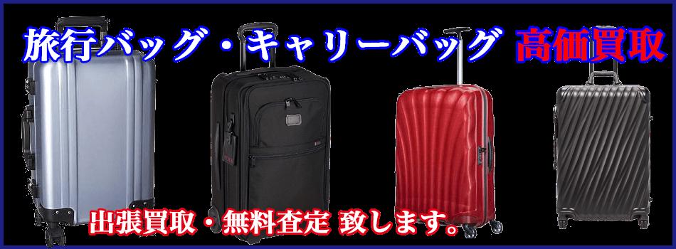 キャーリーバック・スーツケース