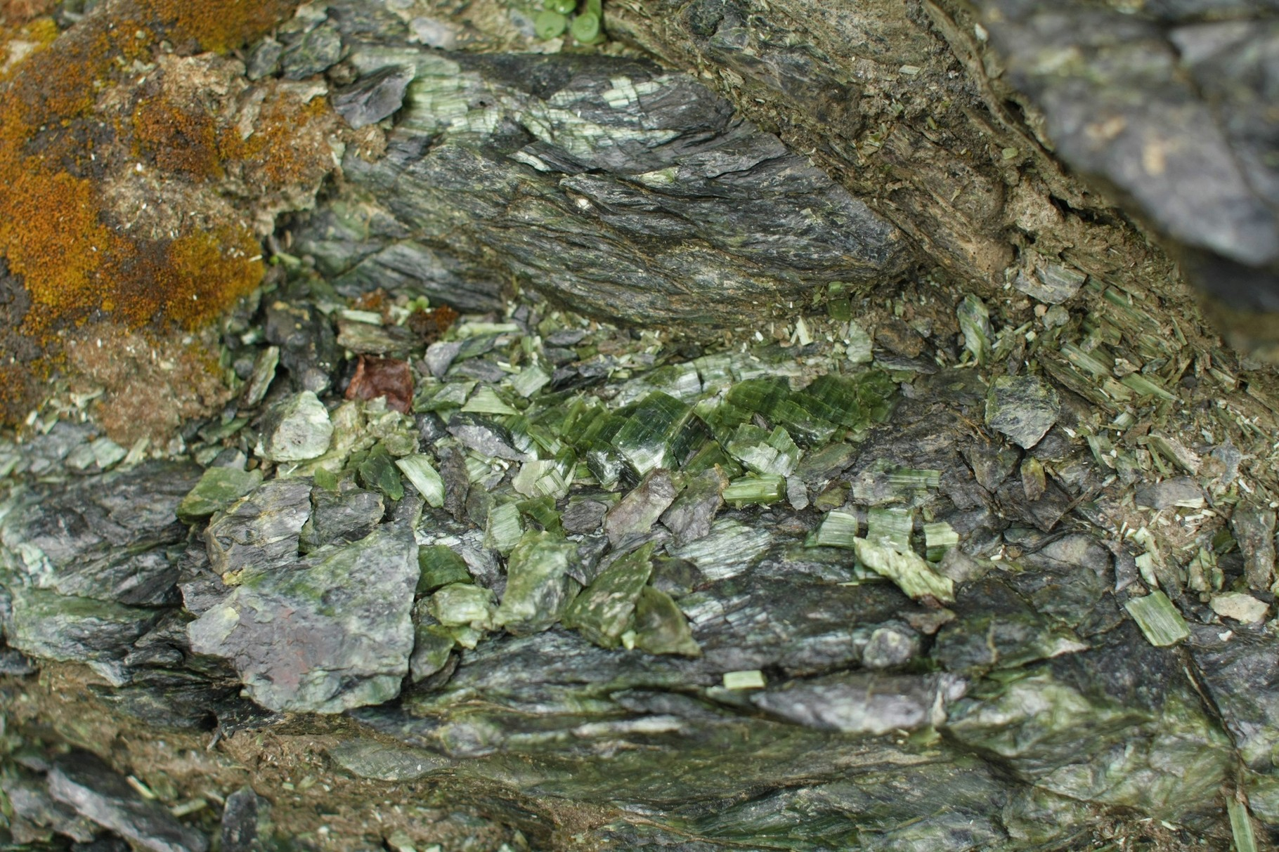 Hellgrüner Serpentinit