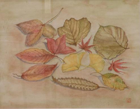 落ち葉  透明水彩6号