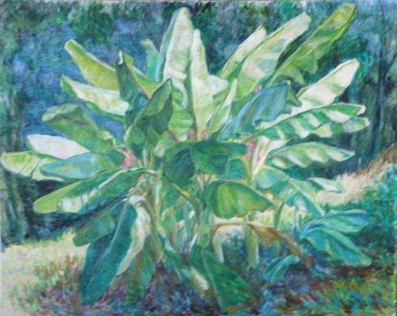 庭のバナナ  油彩30号