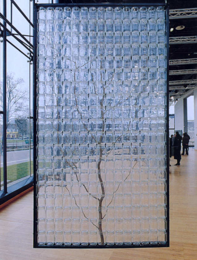 François Yordamian  Taxinomie (arbre), 1987  arbres, bocaux, fer, fil de nylon, crochets  150 x 300 x 11 cm, photo collection Frac Alsace