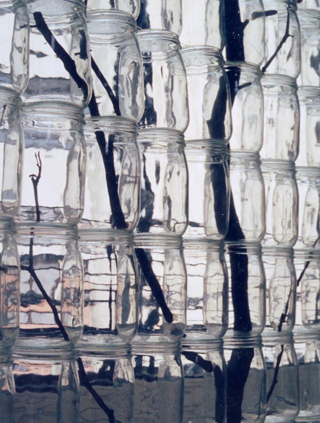 François Yordamian  Taxinomie (arbre/détail), 1987  arbres, bocaux, fer, fil de nylon, crochets  150 x 300 x 11 cm