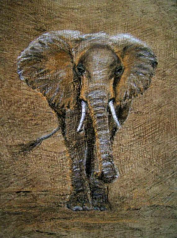 Nanda, Pastell auf Baumrinder 45x65,(c)D.Saul 2011,Elefant verkauft