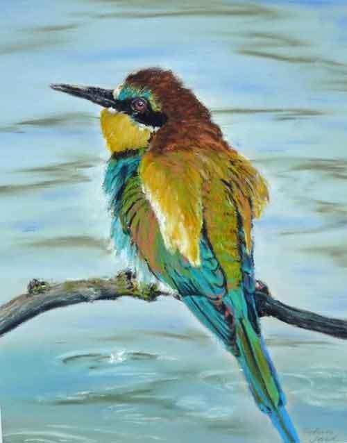 Farben der natur, Bienenfresser, Pastell  40x50,(c)D.Saul 2011