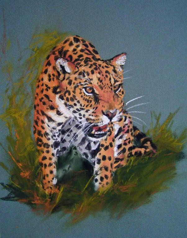 Jaguar, Pastell 30x40cm,(c)D.Saul 2011,Jaguar in Pastell