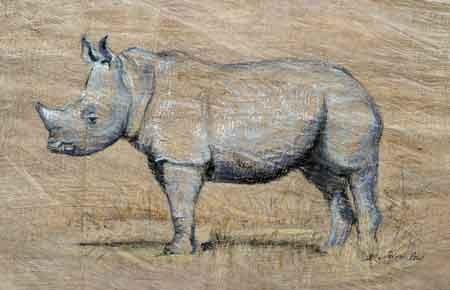 Breitmaulnashorn, Pastell auf Baumrinde, 45x65cm,(c)D.Saul 2011