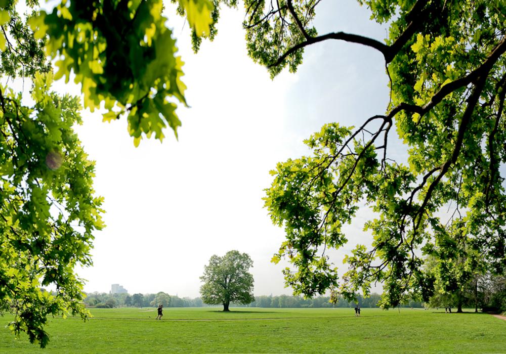 Parkanlage Rosenthal als Teil des Leipziger Auenwaldes - © Dirk Brzoska