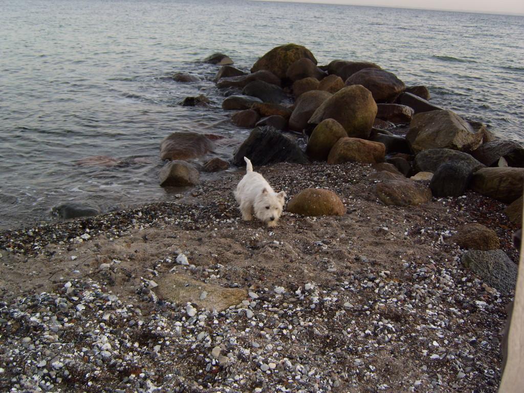 Puh, das Wasser ist ganz schön kalt
