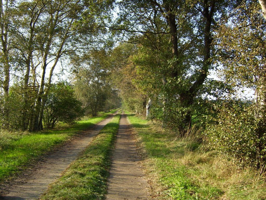 Unser Wanderweg