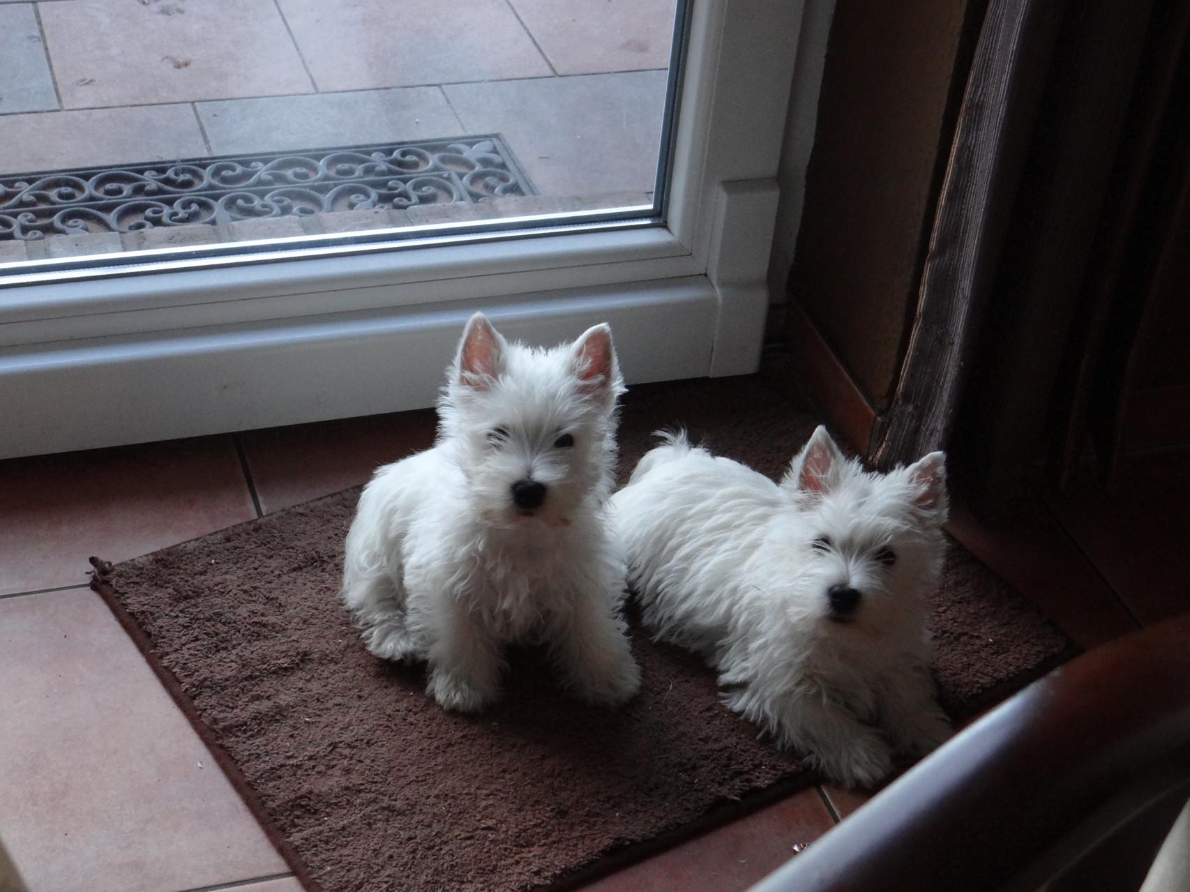 Emily und Pia ( Emily rechts )