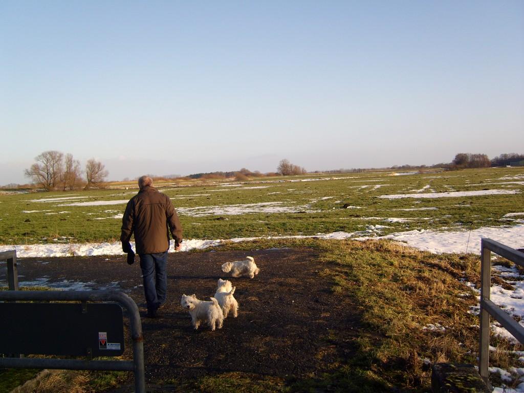 Unser  erster Spaziergang im neuen Jahr