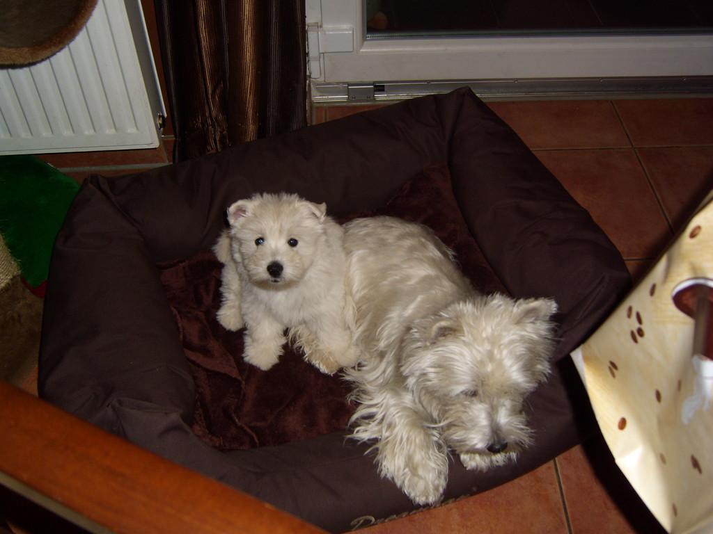 Lou-Lou mit ihrer Mama