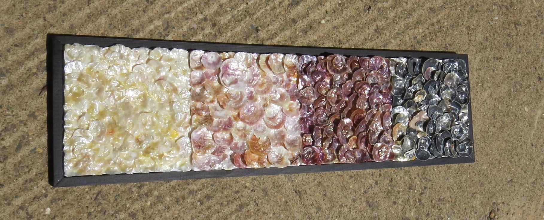 nacre.barre - vue côté4 - tableau coquillage
