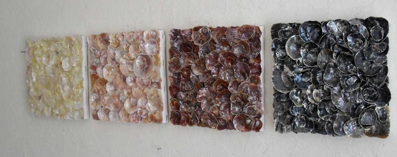 nacre.barre, vue côté1 - tableau coquillage