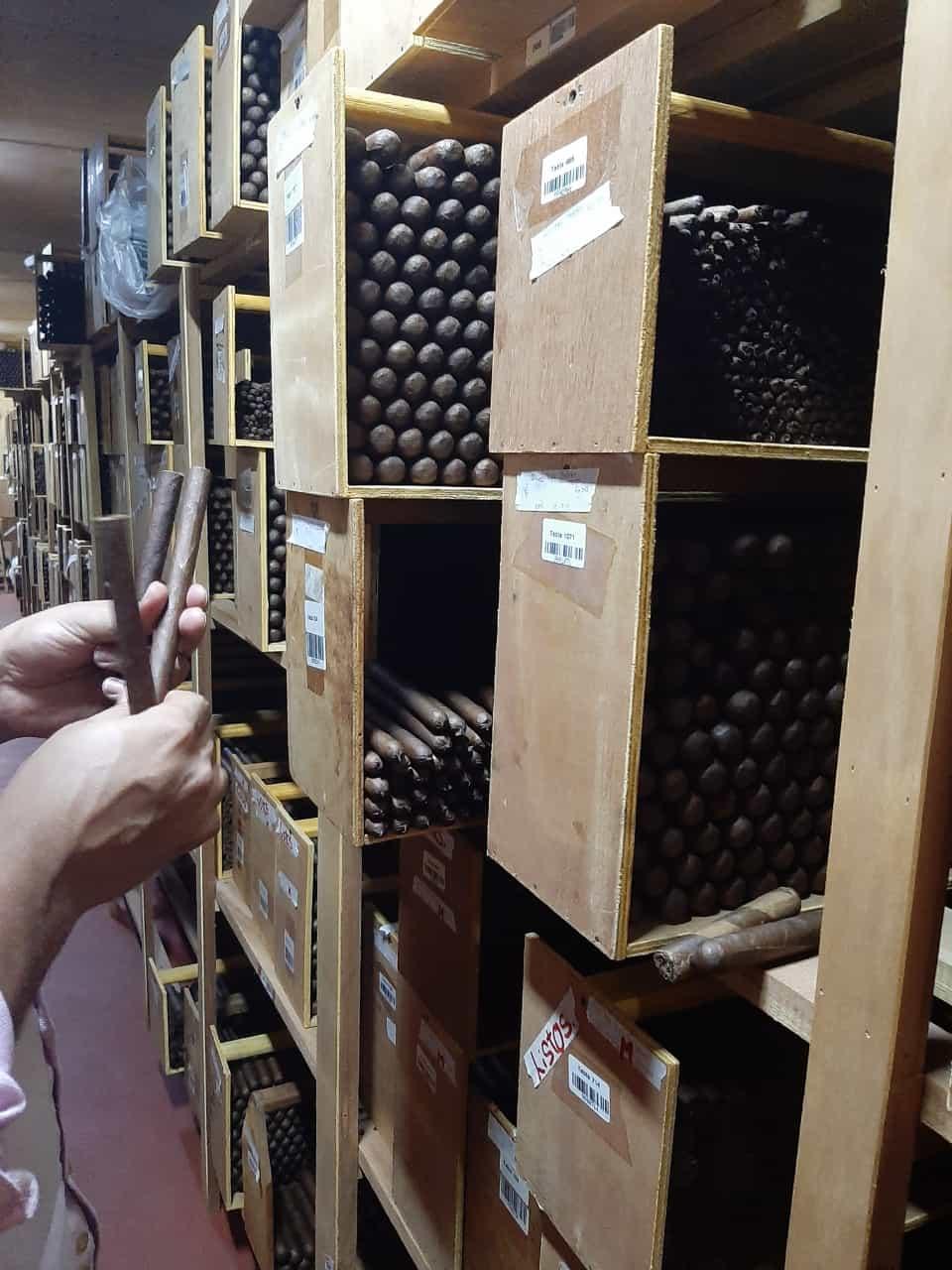 Unsere Zigarren Reifen dann im Humidor, mindestens 8 Wochen