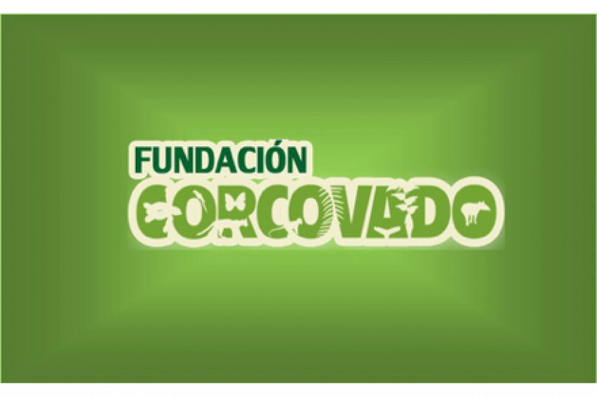 Freiwilligenarbeit bei der Stiftung Corcovado