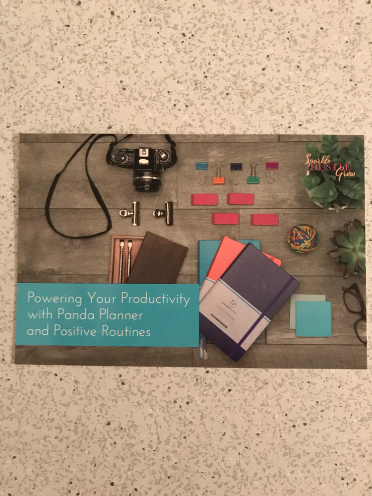 Online training: Power Your Productivity with Panda Planner And Positive Routines
