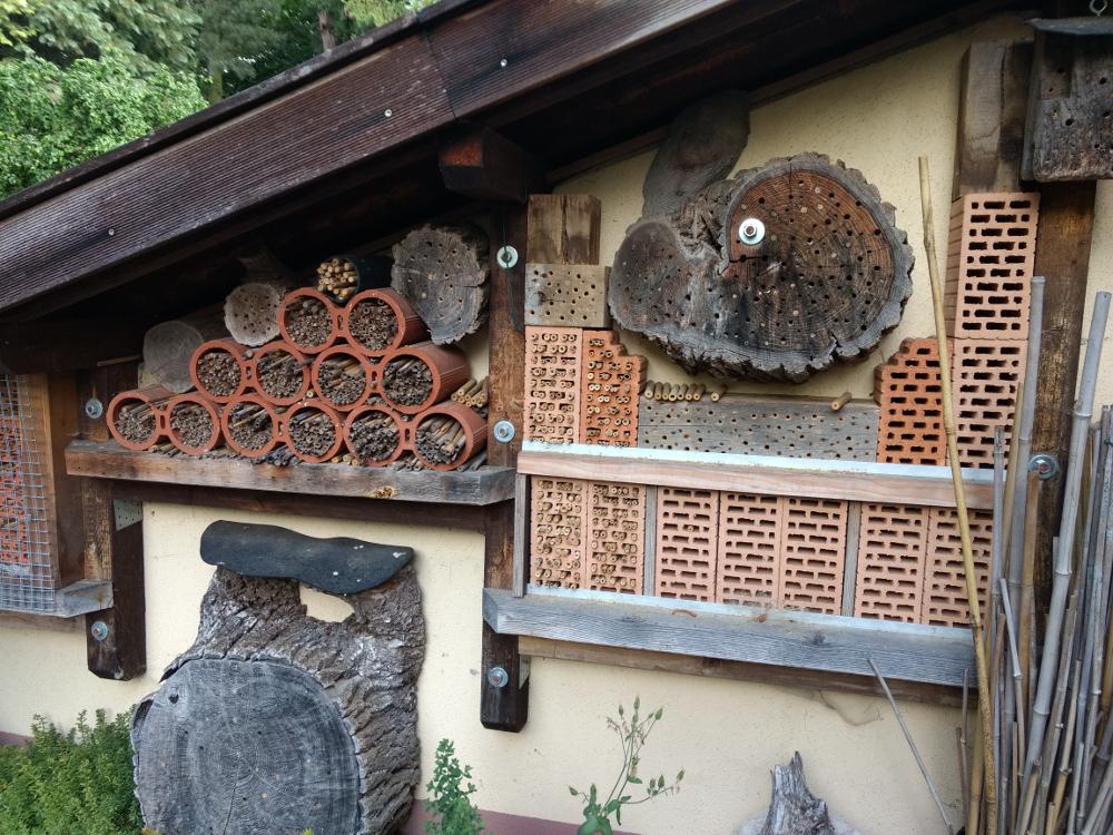 Verschiedene Wildbienenhotels werden in sonniger Lage gut angenommen.