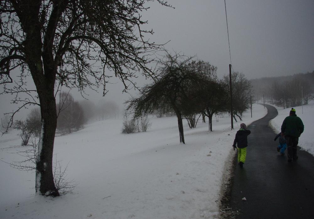 Der Schnee am Stamm der Bäume verrät etwas über die Windrichtung.