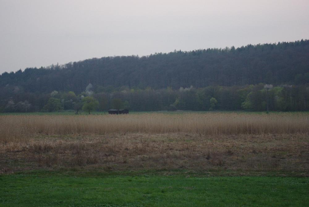 Blick auf das Naturschutzgebiet