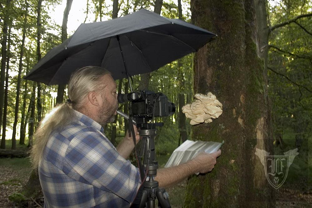 Jörg Ossenbühl  in Aktion: Schirm in der linken Hand, Taschenlampe im Mund, reflektierende Folie für die richtige Beleuchtung in der rechten Hand, Kamera - mit Fernauslöser © Jörg Ossenbühl