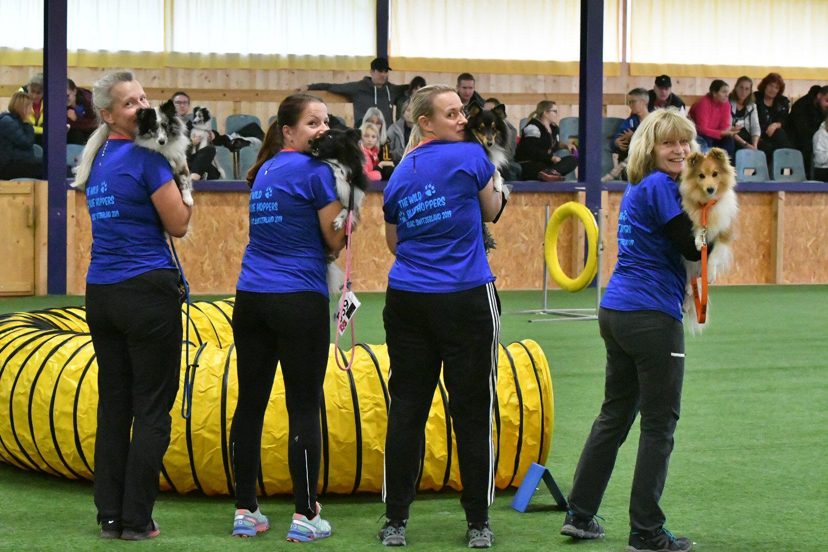 Internationale Sheltie-Agilitymeisterschaft ISAC 2019 in Fräschels